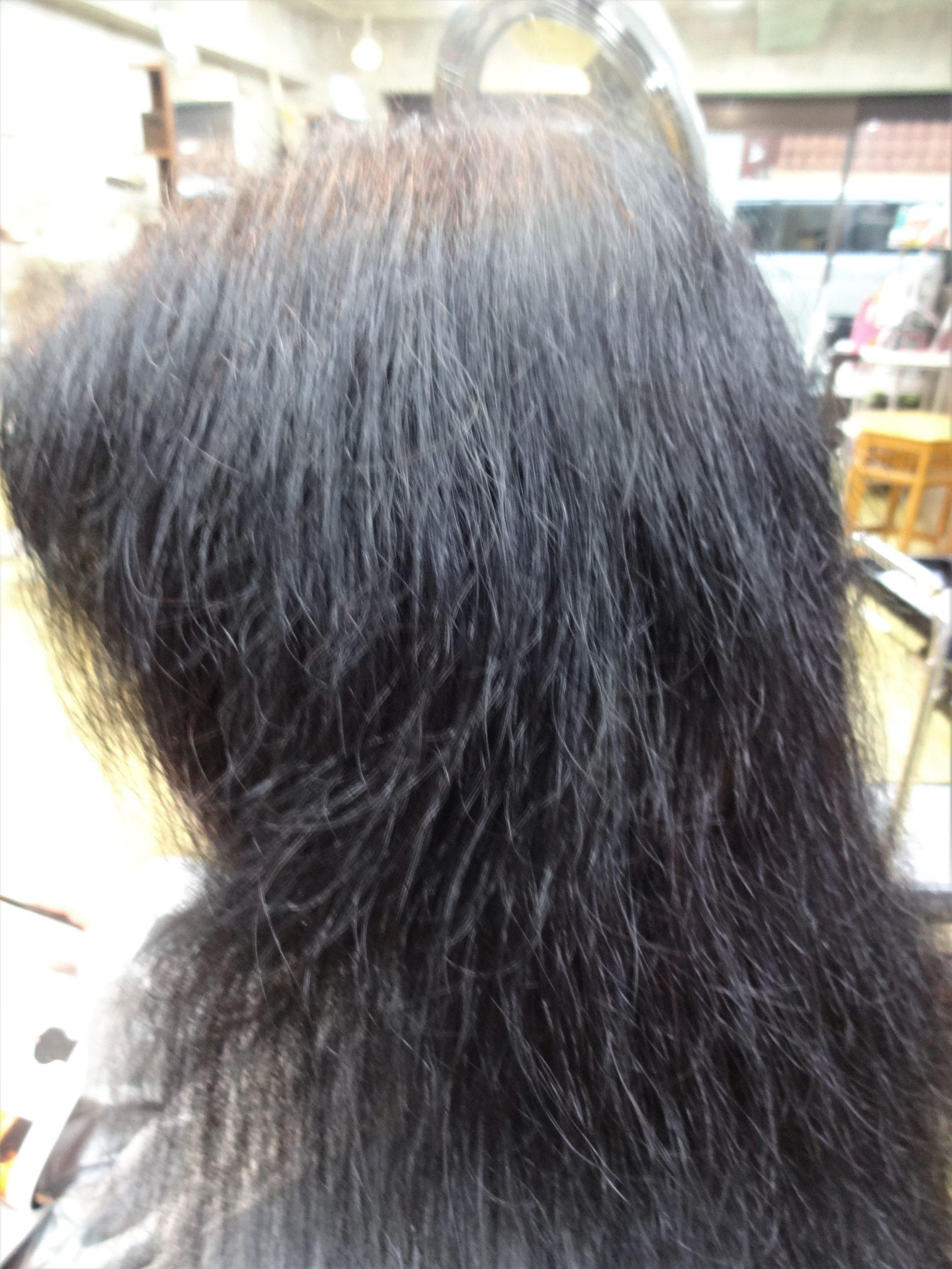 vol.8 女性の4人に1人は貧血気味!貧血で髪の毛が傷みやすくなる!?